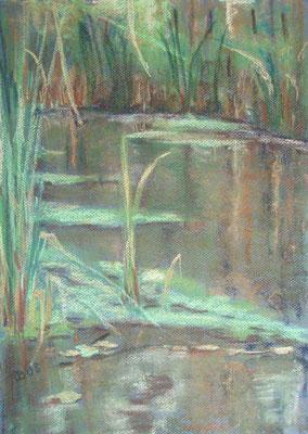 """""""Ahrenshoop - Wasserzug"""" - Pastell, 40 x 30, 2008"""