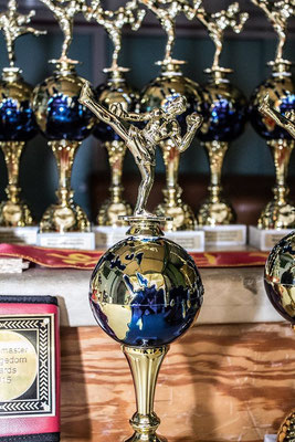 Die Pokale des Martial Arts Day