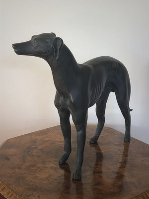 Bronze Greyhound  and a great size H 290 x W 310 mm Price 960.00