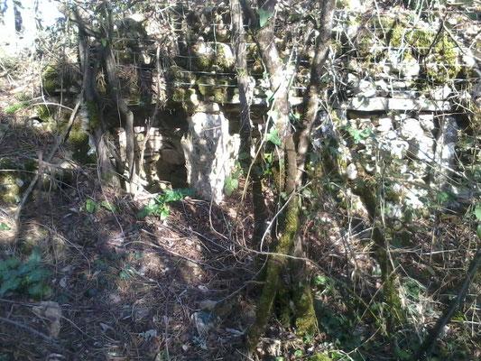 A l'arrière d'un mur des emplacements pour ruches, une végétation importante d'arbustes et de ronces en empêche l'accès (février 2016)