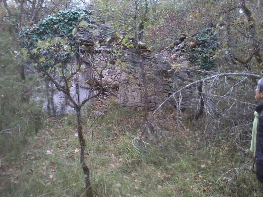 Grange-étable en ruine N° 52Lasdeveses Long : 1°22'10'' E Lat : 44°27'6'' N