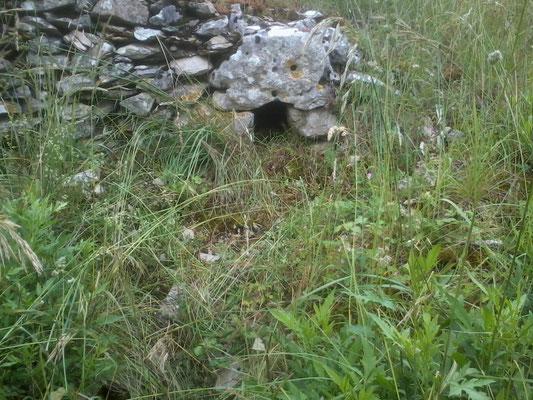 Mur N°34  Pierres sèches avec passage lapins- Flottes - Long : 1°22'14.5'' E- Latit :44°26'24.2'' N
