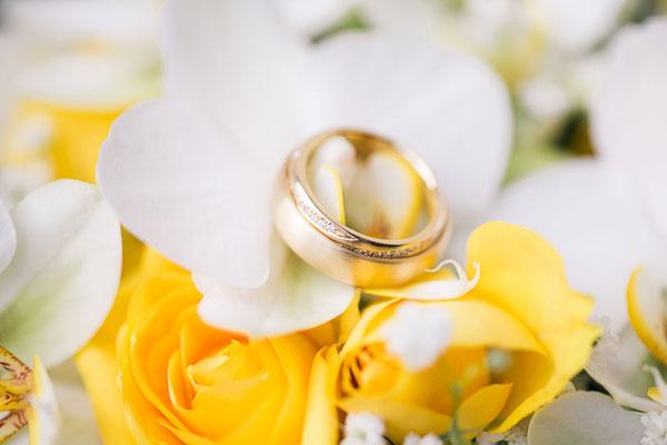 goldene Ringe auf Rosenblüten