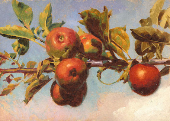 "Red apples - 12x18"" oil painting by Peter Schaumann"
