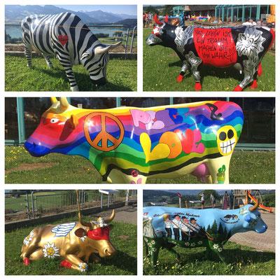 Bunt bemalte lebensgrosse Kühe auf dem Autobahnrastplatz Greyerz