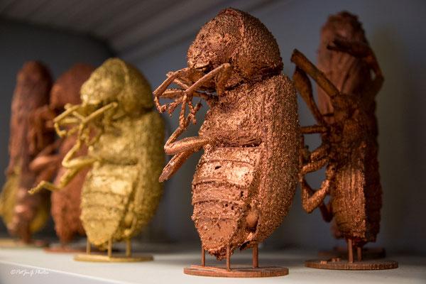 Les petites bébettes du passée générées avec une impriante 3D