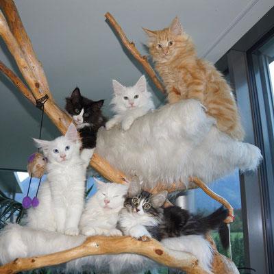 Die ganze Familie mit 12 Wochen