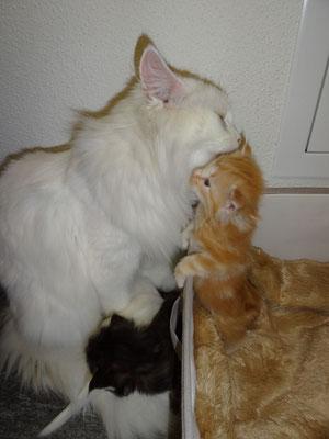 und er möchte doch raus zur Mama...