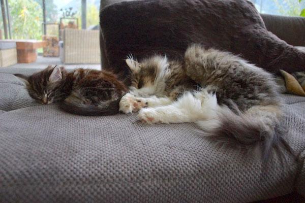 mit Alisa am Kuscheln und Schlafen