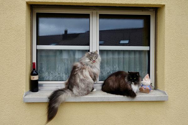Mit seiner Schwester beobachtet er die Welt