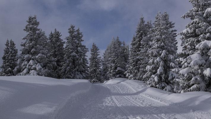 Winter auf Sunnbüel