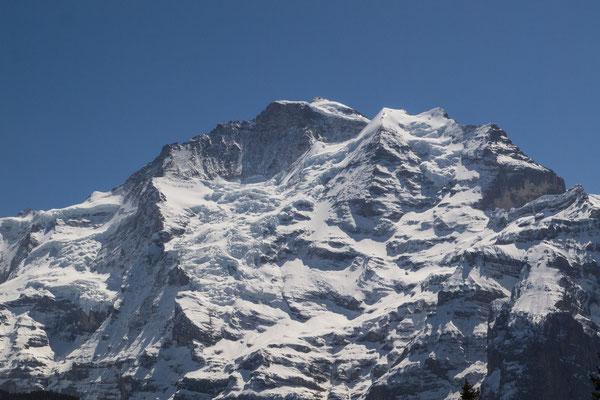 Jungfrau (Ansicht von der Grütschalp aus) / Bild Nr. P4297366-2