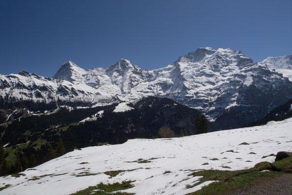 Eiger, Mönch & Jungfrau von der Grütschalp aus gesehen / Bild Nr. P4297358