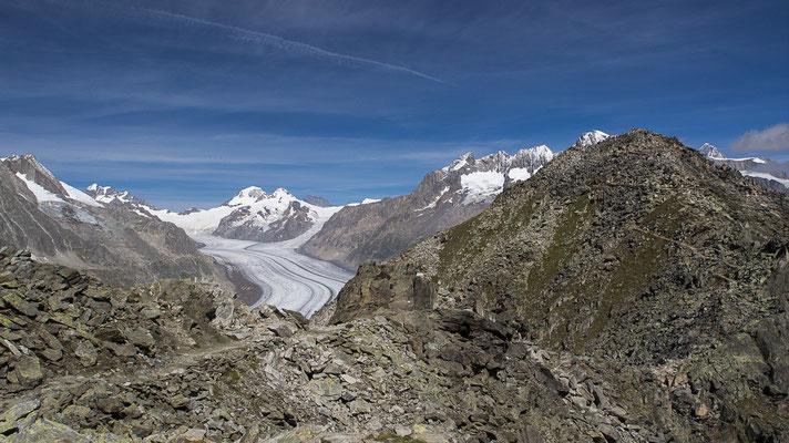 Aletschgletscher im Vordergrund rechts das Eggishorn / Bild-Nr. 8271005