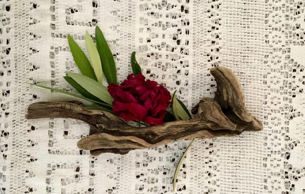 Schwemmholz und Rosen