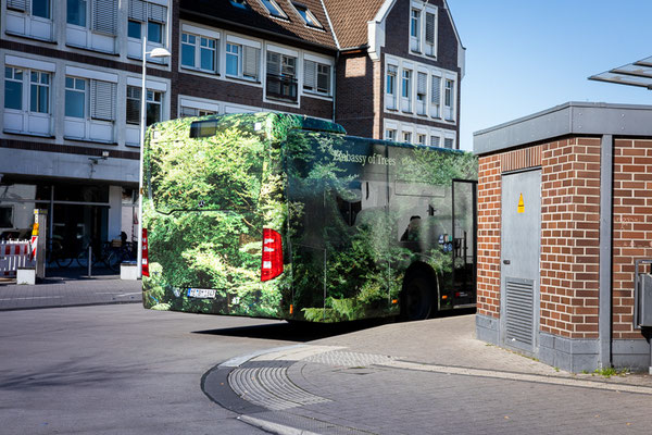 FForest Bus, oto. Embassy of Trees I Astrid Piethan