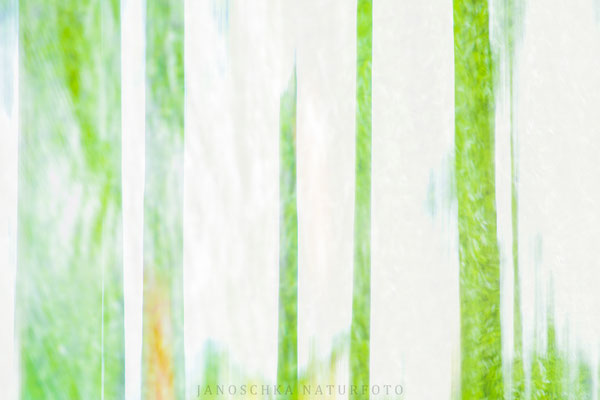 Farben-und-Formen-11