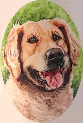 Unieke-handbeschilderde-dierenurnen-Gepersonaliseerde-urn-met-portret-hond-Golden-Retriever-detailaanzicht-Unieke-Handbeschilderde-urnen-Bijzondere-urnen-Maatwerk-Urn-voor-hond-Handgemaakte-Urnen-Urn-hond-Urn-laten-beschilderen-Hondenurnen