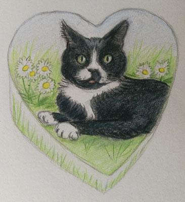 schetsontwerp-persoonlijke-urn-ontwerp-dieren-urn-ontwerp-dierenurn-ontwerp-persoonlijke-urn-kat-persoonlijke-urn-hond-maatwerk-urn-kat-ontwerpschets-urn-kat-ontwerpschets-urn-hond-persoonlijke-urn-laten-maken