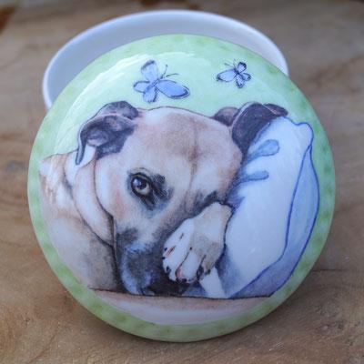 unieke-asdoosje-asdoosjes-asbewaardoosjes-asbewaardoosje-herinneringsdoosje-herinneringsdoosjes-koesterdoosje-koesterdoosjes-urn-met-portret-maatwerk-urntje-persoonlijk-urntje-voor-dieren-mini-urntje-kat-mini-urntje-hond-unieke-mini-urntjes-huisdier