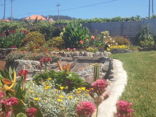 Ein kleiner Teil des Gartens.