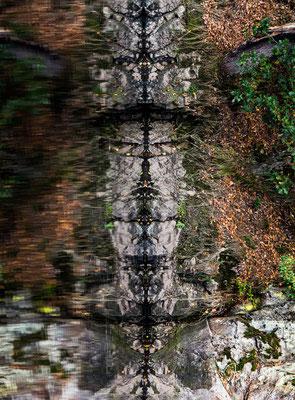 Wasserspiegelung um 90 Grad gedreht, an der Pfreimd