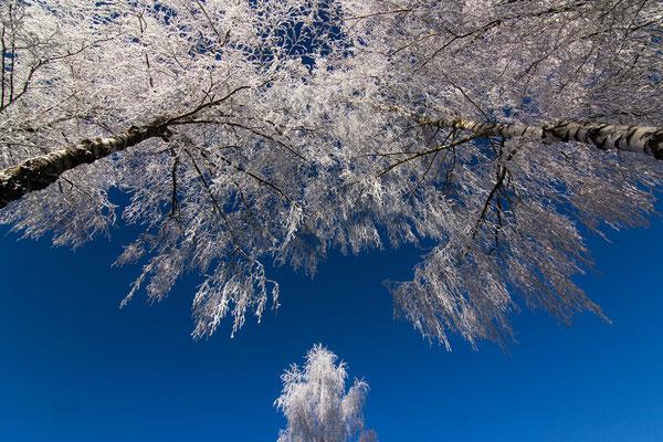 Winterzauber, Hillstett bei Rötz