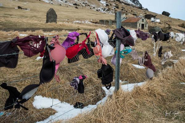 ungewohnte Bilder aus Island...