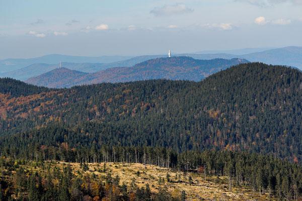Blick zum Hohen Bogen, Bayerischer Wald