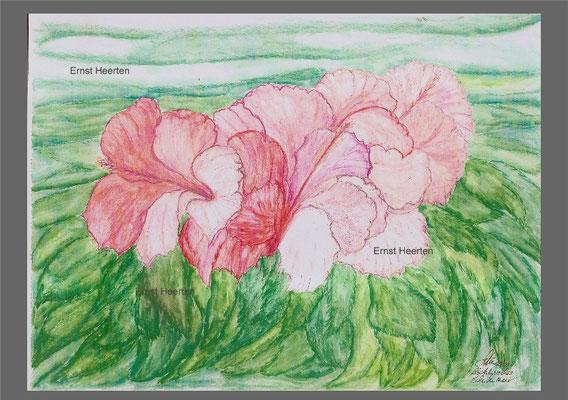 andalusische Blütenpracht     /    100,- €