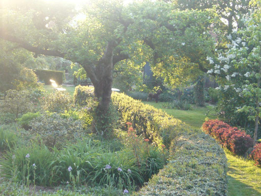 Centre du jardin