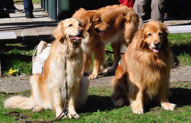 Drei vom Farbschlag blond und wie schön können Senioren sein!