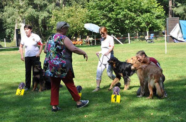 Beatrix Feix gratuliert Roswitha Rotter zum Schönsten Junghund der Schau, Jolanda vom Eichwaldsgrund