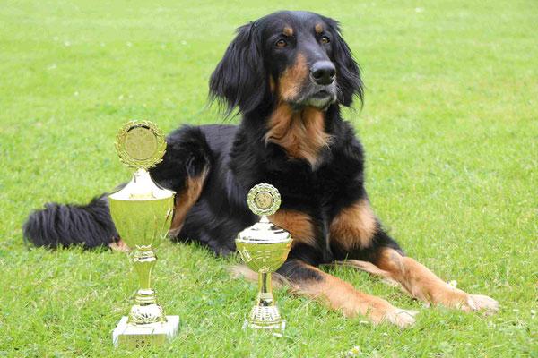 Beverly-Belaine vom Klausbachtal und ihre Pokale