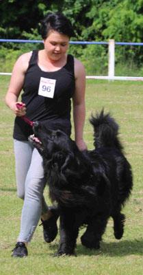 Ein Bild von einem Mensch-Hund-Team