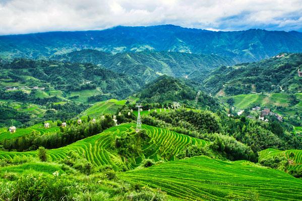 Dragons backbone ricefields, Guilin, China
