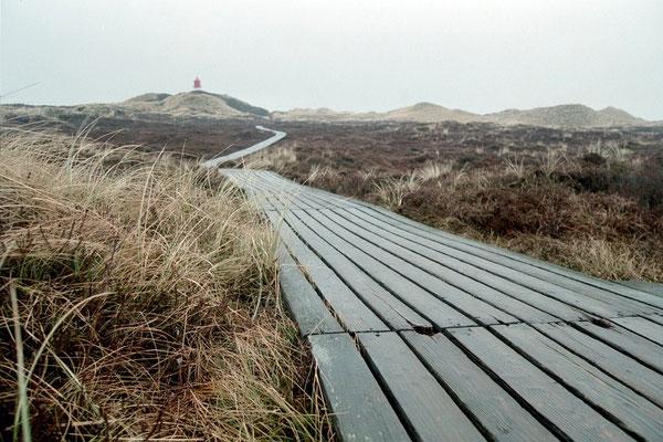 Insel Amrum, Bohlenweg