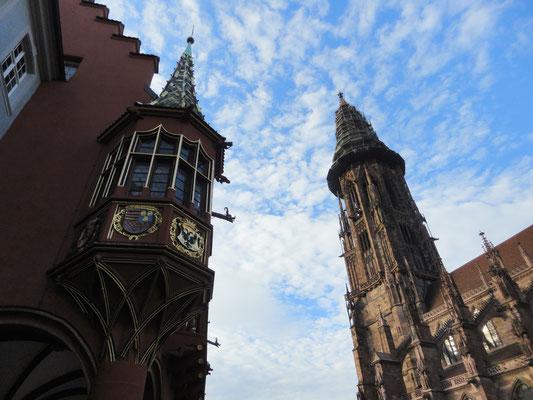 Freiburg im Breisgau, Münster