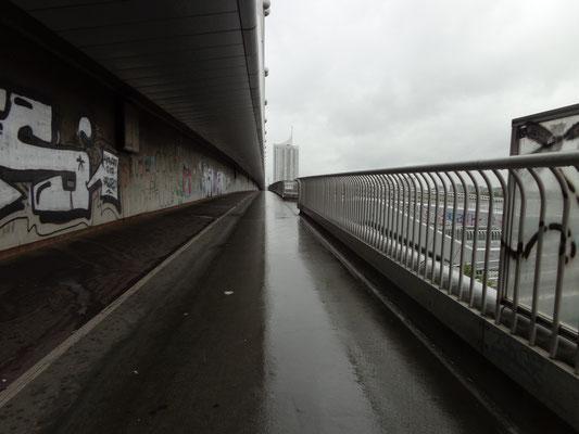 Brücke über die Donau, Österreich