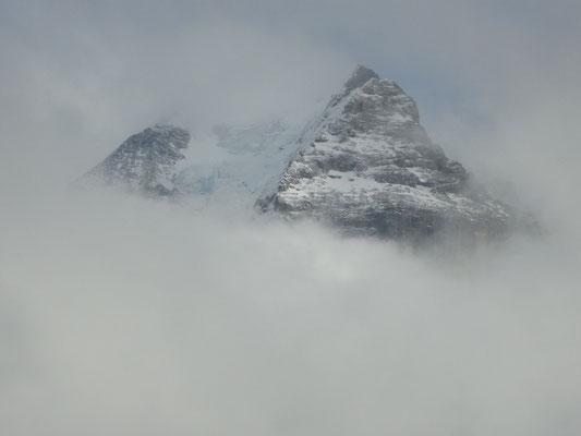 Blick auf den Eiger, Mürren, Kanton Bern