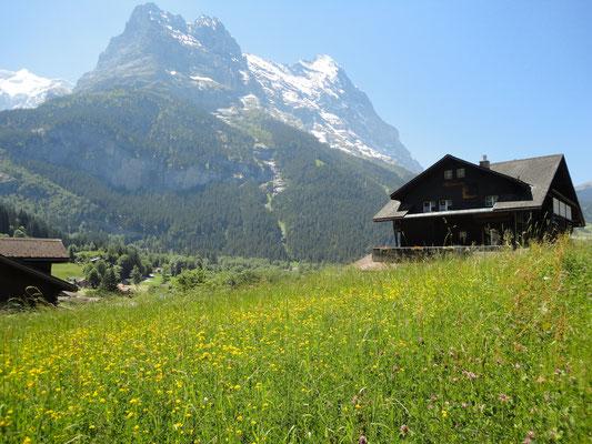 Grindelwald, Kanton Bern