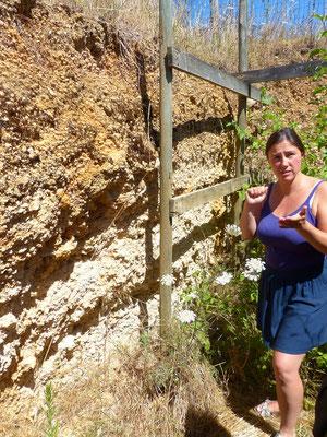 Die Böden des Weingutes enthalten Feuerstein und Eisenoxyde
