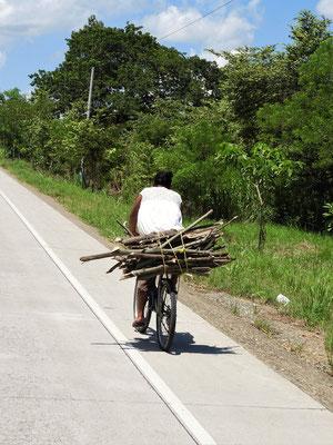 ....da noch mit Holz gekocht wird, gehört Holz sammeln zur täglichen Arbeit....