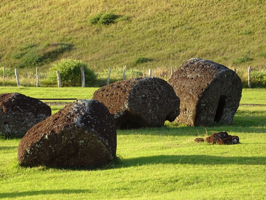 Haarschmuck der Moai bereit zum Abtransport
