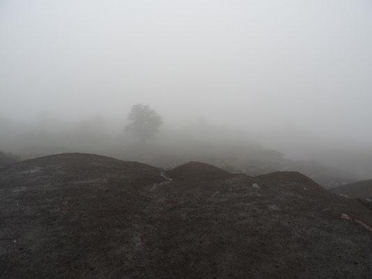 Unsere Sicht vom Vulkan ins Tal