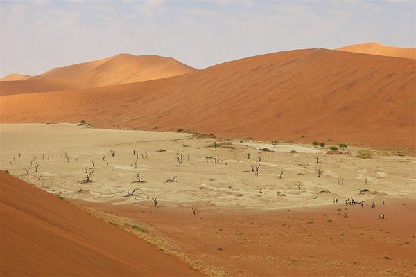 Sossusvlei - die Salzpfanne mit abgestorbenen Kameldornbäumen