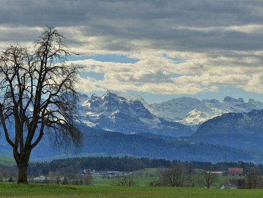 ....mit der wunderbaren Aussicht auf die verschneiten Berge....