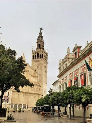La Giralda im Regen - der Glockenturm der Kathedrale war früher ein Minarett