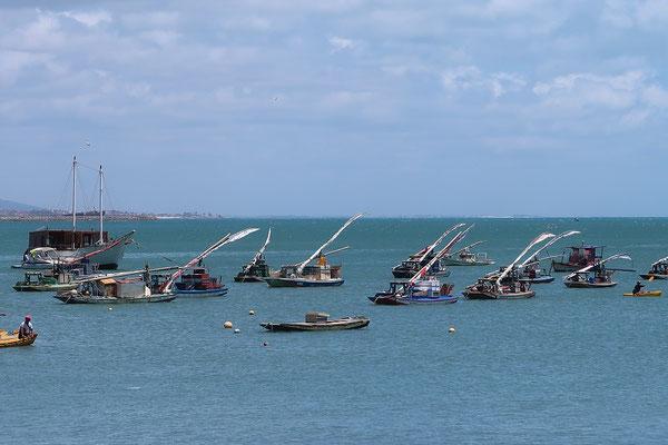 ....mit den Jangadas, den typischen Segelflössen der Fischer