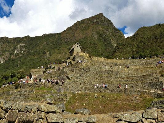 ....Machu Picchu, 3060m.